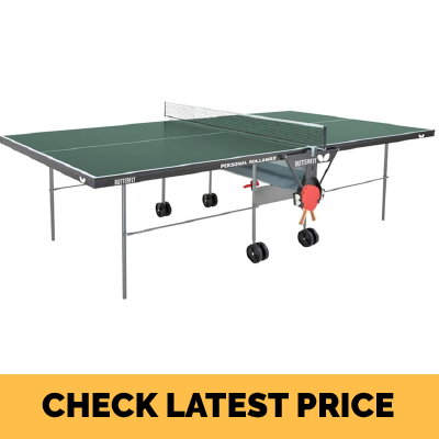 Butterfly Personal Ping Pong Table (Kids Ping Pong Table) Review