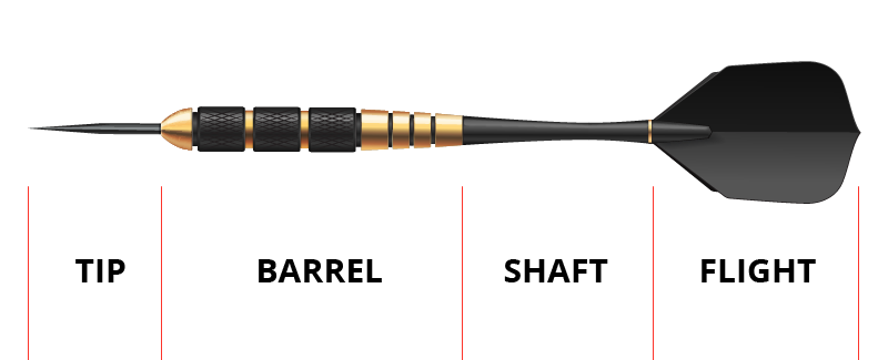 dart body part